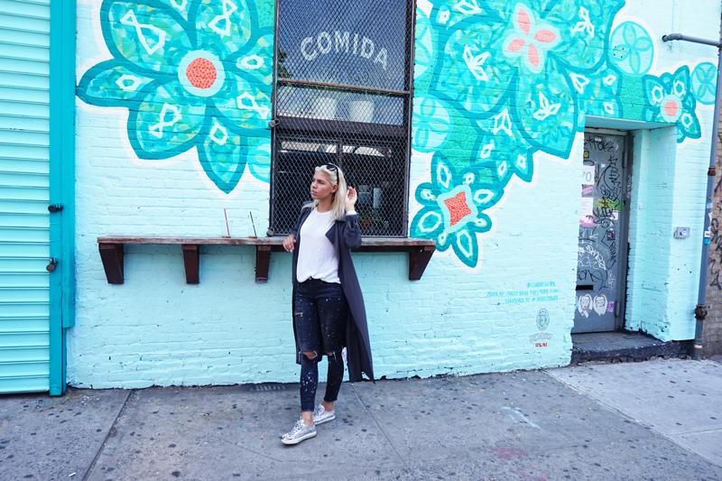 new-york_brooklyn_4