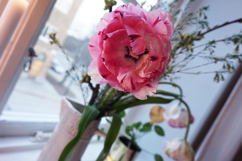 blommor_9